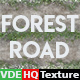 VDE_HQ_Forest_Road_Texture