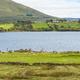 Sheep Grazing in Ireland  - PhotoDune Item for Sale