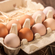 Fresh chicken eggs in cardboard box - PhotoDune Item for Sale