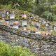 Beehives. Traditional stone wall structure against bears. Muniellos, Asturias, Spain - PhotoDune Item for Sale