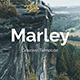 Marley Premium Google Slide Template - GraphicRiver Item for Sale