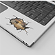 Laptop Sticker Mockup Set - GraphicRiver Item for Sale