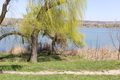 Landscape with beautiful view of the lake. - PhotoDune Item for Sale