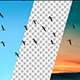 Flock Of Birds - VideoHive Item for Sale