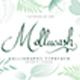 Mollucash - GraphicRiver Item for Sale