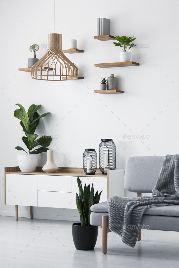 Wooden pendant light, simple shelves on a white wall and a plant - Stock Photo - Images