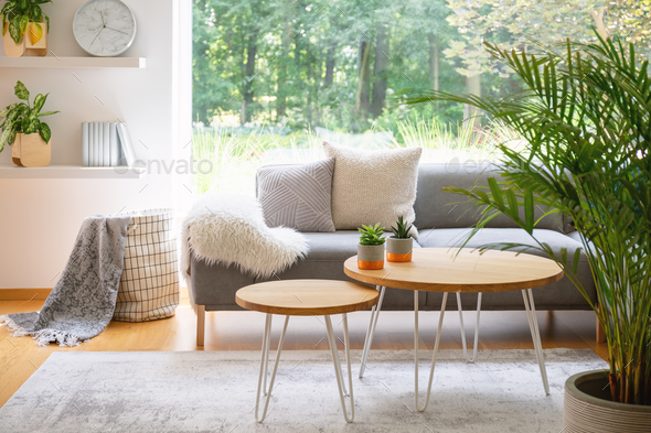 Wooden tables in front of grey sofa with cushions in scandi livi - Stock Photo - Images