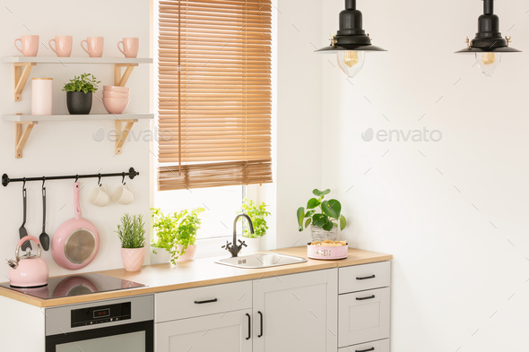Plants On Wooden Countertop In Kitchen Interior With Blinds Lam
