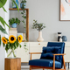 Sunflowers on wooden stool next to blue armchair in living room - PhotoDune Item for Sale