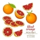 Blood Orange Fruit - GraphicRiver Item for Sale