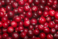 Cranberry v. oxycoccus background, top - PhotoDune Item for Sale