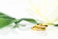 Close up Wedding ring on white_-2 - PhotoDune Item for Sale