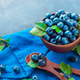 Blueberries in a ceramic cup   - PhotoDune Item for Sale