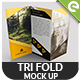 Tri Fold Brochure MockUps - Realistic Brochure MockUps - GraphicRiver Item for Sale