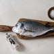 Raw sea bream fish - PhotoDune Item for Sale