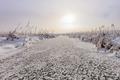 lake in winter - PhotoDune Item for Sale