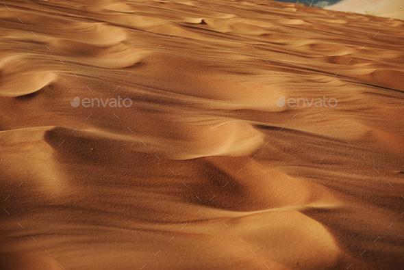 Desert - Stock Photo - Images