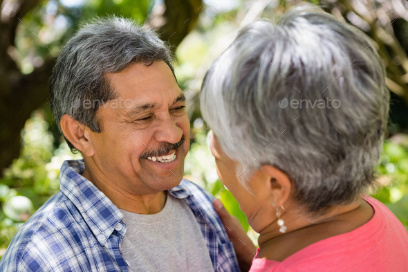Romantic senior couple looking face to face in garden - Stock Photo - Images