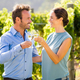 Smiling couple toasting wineglasses at vineyard - PhotoDune Item for Sale