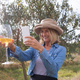 Free Download Woman taking a photo of wine glass in olives farm Nulled