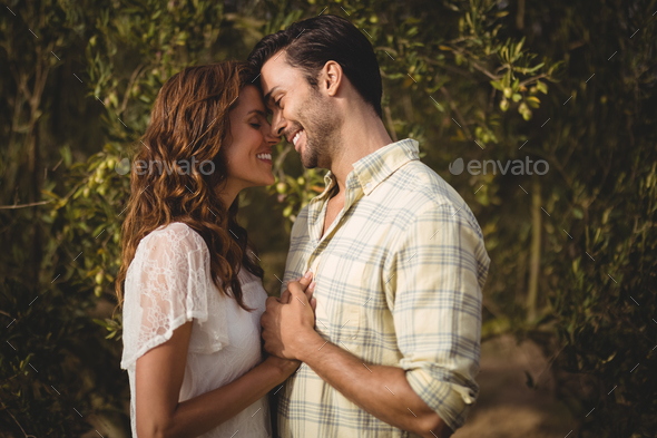 Loving couple standing by trees at olive farm - Stock Photo - Images