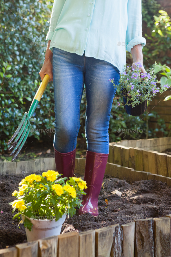 Low section of senior woman holding garden fork and potted plant - Stock Photo - Images