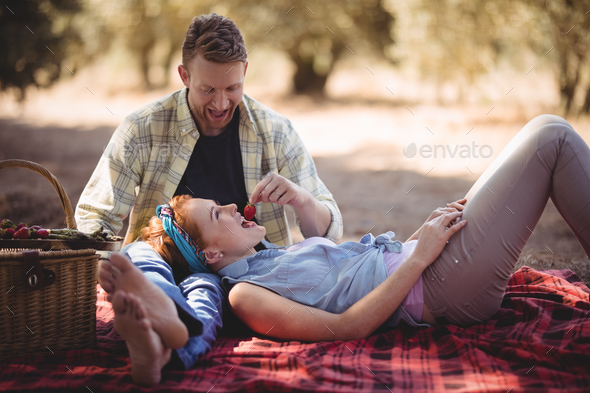 Cheerful man feeding strawberry to woman at farm - Stock Photo - Images