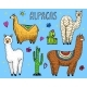 Set of Alpaca Llamas - GraphicRiver Item for Sale