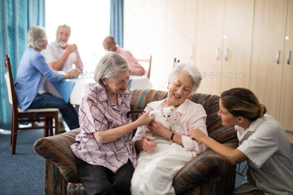 Senior friends and female doctor stroking kitten - Stock Photo - Images