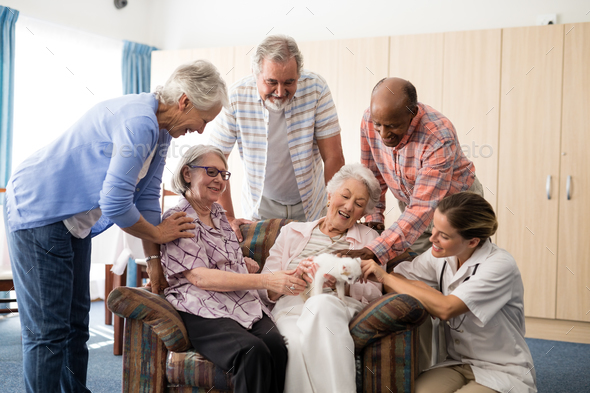 Cheerful senior people and practitioner playing with kitten - Stock Photo - Images