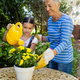 Smiling senior woman standing by granddaughter watering yellow flowers on table - PhotoDune Item for Sale