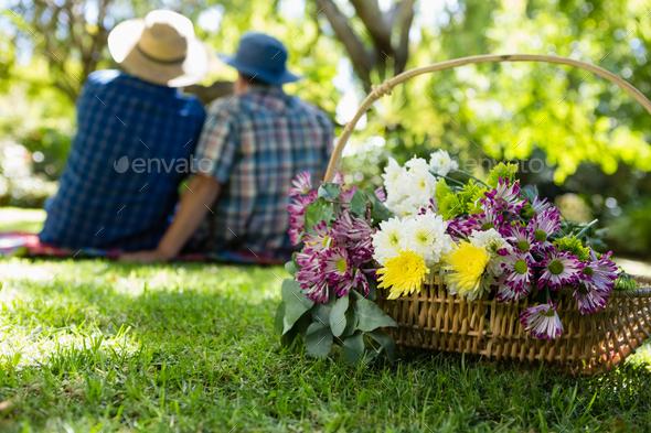 Senior couple taking a selfie in garden - Stock Photo - Images