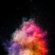 Holi powder exploding on black background. - PhotoDune Item for Sale
