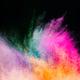 Holi powder blowing up on black background. - PhotoDune Item for Sale