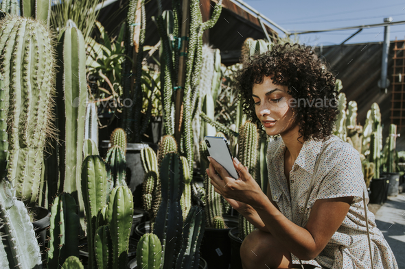 Woman taking photos of cacti at a botanical garden - Stock Photo - Images