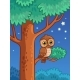 Owl at Night Sit on a Tree Branch - GraphicRiver Item for Sale