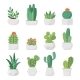 Cartoon Cactus and Succulents in Pots Vector Set - GraphicRiver Item for Sale