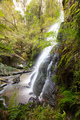 Henderson Falls Cape Otway - PhotoDune Item for Sale