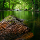 Reddish rock in the middle of a river - PhotoDune Item for Sale