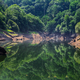Calm waters reflect the forest in a river - PhotoDune Item for Sale