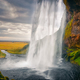 Landscape view of beautiful Seljalandsfoss waterfall in Iceland - PhotoDune Item for Sale