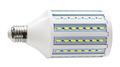 studio LED bulb corn lamp isolated on white - PhotoDune Item for Sale