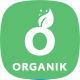 Organik - An Appealing Organic Store, Farm & Bakery WooCommerce Theme - ThemeForest Item for Sale