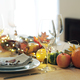 thanksgiving table setting - PhotoDune Item for Sale