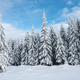 Beautiful winter landscape with snow on the trees - PhotoDune Item for Sale