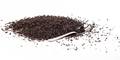 Back tea isolated - PhotoDune Item for Sale