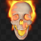 Skull Burning Transition - VideoHive Item for Sale