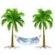 Hammock Between Two Palm Trees Isolated on White - GraphicRiver Item for Sale
