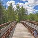 Bridge into the North Woods - PhotoDune Item for Sale