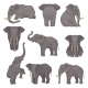 Flat Vector Set of Elephants in Different Poses - GraphicRiver Item for Sale